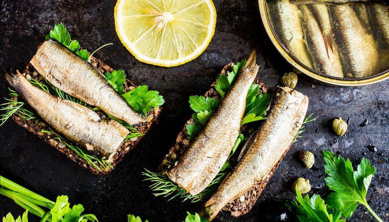 sardinha-peixe-omega-0417-1400x800